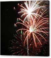 Fireworks6521 Canvas Print