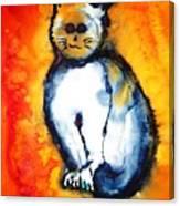 First Cat Canvas Print