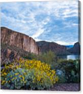 First Day Of Spring - Canyon Lake Canvas Print
