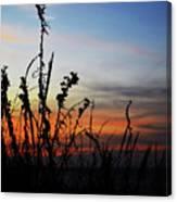 First Landing Sunset Canvas Print