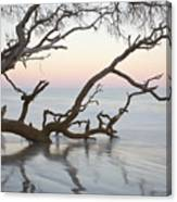 First Light - Hunting Island South Carolina Canvas Print