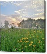 First Light In Glacial Park Canvas Print