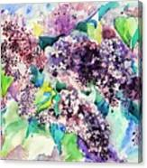 First Lilac. Canvas Print