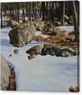 First Melt Canvas Print