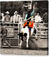 First Out Of The Chute Canvas Print