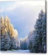 First Snow Fall  Canvas Print