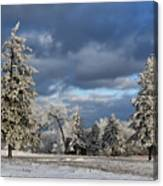 First Snow Of The Year Canvas Print