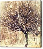 First Snow. Snow Flakes Canvas Print