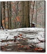 First Snowfall - A Walk In The Woods Canvas Print