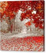 First Snowfall In Duluth Canvas Print