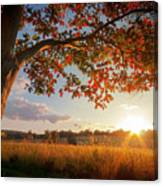 First Touch Of Autumn Canvas Print