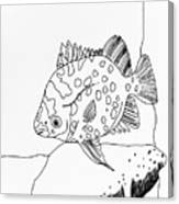Fish And Rock Canvas Print