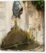 Fish Fountain Canvas Print