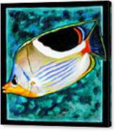 Fish Number Eleven Canvas Print