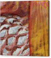 Fish Skin Canvas Print