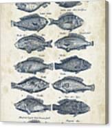 Fish Species Historiae Naturalis 08 - 1657 - 13 Canvas Print