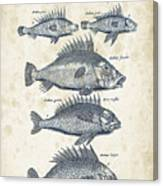Fish Species Historiae Naturalis 08 - 1657 - 16 Canvas Print