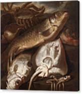 Fish Still Life Canvas Print