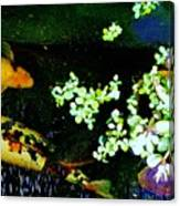 Fish Water Flowers 3 Canvas Print