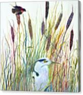Fishing Blue Heron Canvas Print