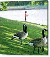 Fishing With The Geese Canvas Print