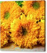 Five Exotic Sunflowers Canvas Print