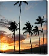 Five Palms Maui Hawaii Canvas Print