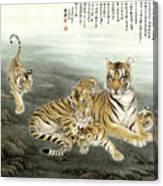 Five Tigers Canvas Print