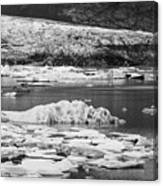 Fjallsarlon Glacier Lagoon Iceland 2348 Canvas Print