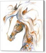Flair Canvas Print
