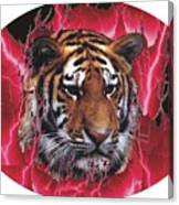 Flame Tiger Canvas Print