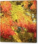 Flaming Autumn Leaves Art Canvas Print