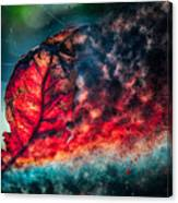 Flaming Fall Color Canvas Print
