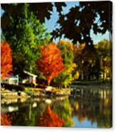 Flaming Maples Canvas Print