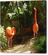 Flamingo Duo Canvas Print