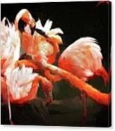 Flamingo Mingles Canvas Print
