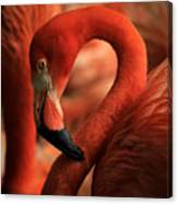 Flamingo Poised Canvas Print