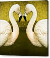 Flamingo Reflection Canvas Print