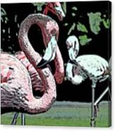 Flamingos II Canvas Print