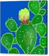 Flap Jack Cactus Canvas Print