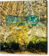 Flash Of Emerald Canvas Print