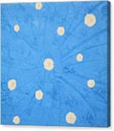 Flashing Chakra Canvas Print