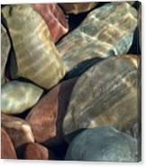 Flathead River Rocks Canvas Print