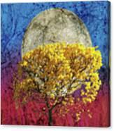 Flavo Luna In Ligno Canvas Print