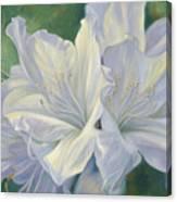 Fleurs Blanches Canvas Print