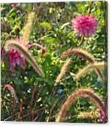 Fleurs Des Champs Canvas Print