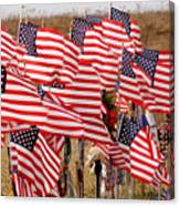 Flight 93 Flags Canvas Print