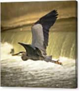 Flight Below The Falls Canvas Print