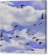 Flight Over Lake Canvas Print