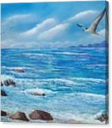Flight Seascape Canvas Print